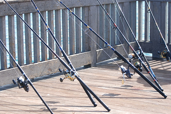 Pier Photograph - Fishing Rods by Rob Hans