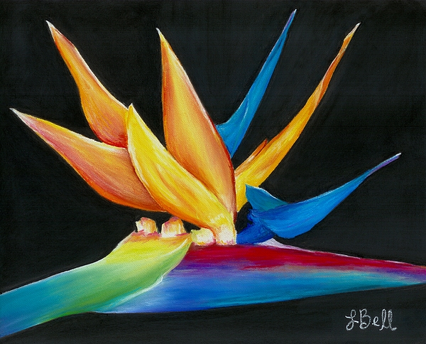 Bird Of Paradise Painting - Flight To Paradise by Laura Bell