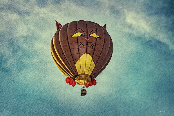 Cat Photograph - Floating Cat - Hot Air Balloon by Bob Orsillo