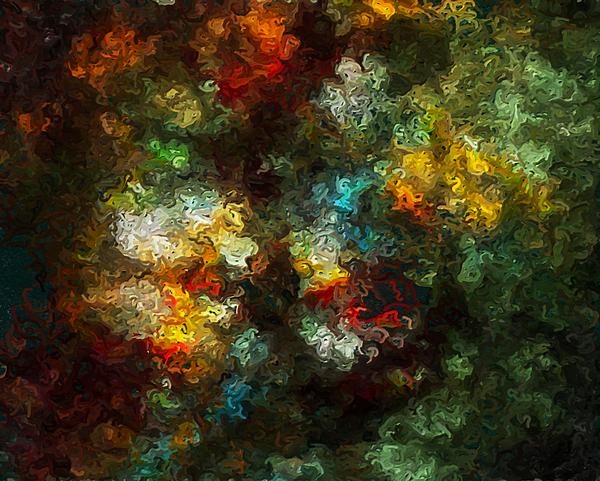 Floral Impression Digital Art by Rein Nomm