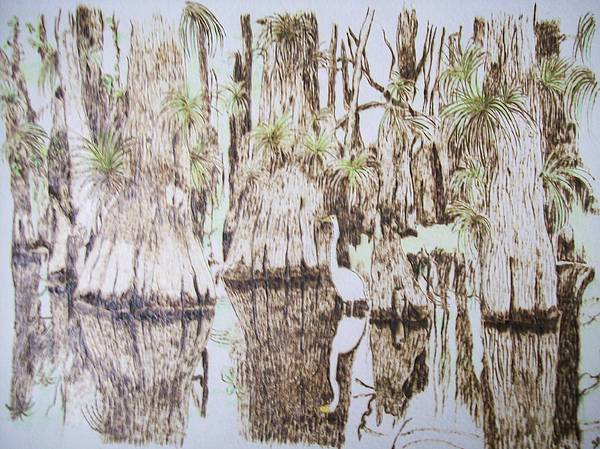 Crane Pyrography - Florida Wildlife Pyrograpgic Portrait By Pigatopia by Shannon Ivins