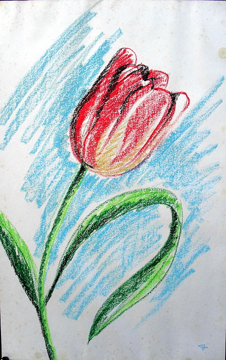 Nature Pastel - Flower 06 by Mohd Raza-ul Karim