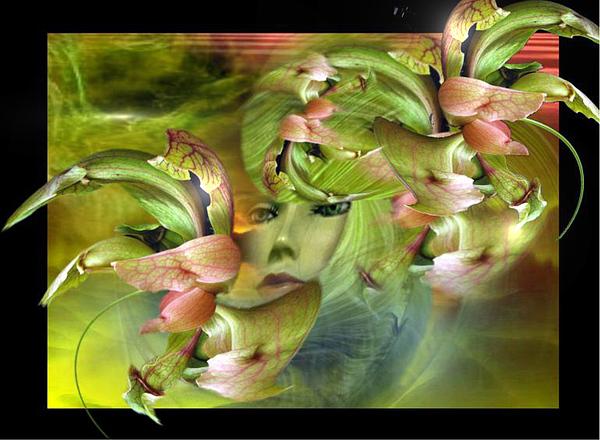 Flower Digital Art - Flower Lady by Maria Datzreiter