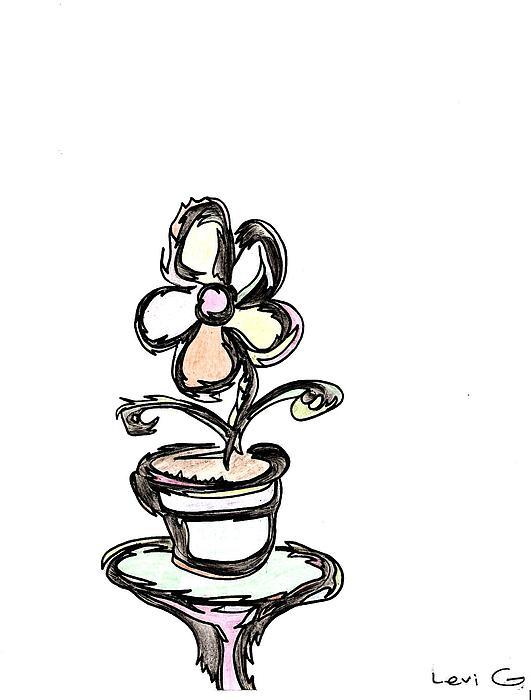 Flower Drawing - Flower  by Levi Glassrock