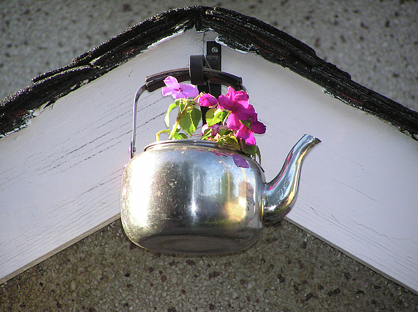 Flowers Photograph - Flowers In Teapot by Richard Mitchell