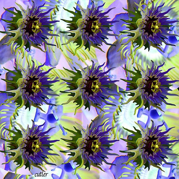 Flower Digital Art - Flowers On The Wall by Betsy Knapp
