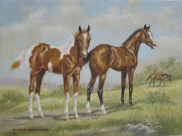 Foals In Pasture Painting by Dorothy Coatsworth