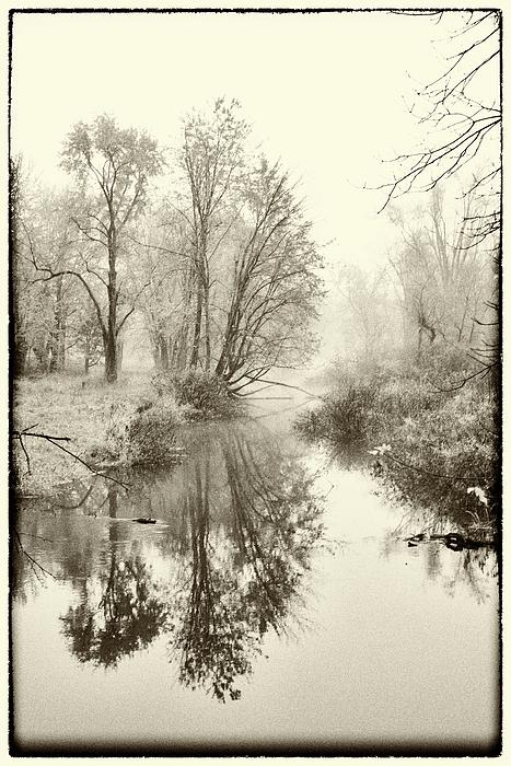 Fog Photograph - Fog by Gej Jones