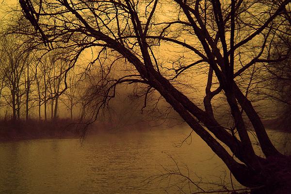 Landscape Photograph - Fog In The Morning. by Itai Minovitz