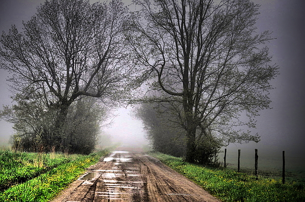 Path Photograph - Follow The Fog by Emily Stauring