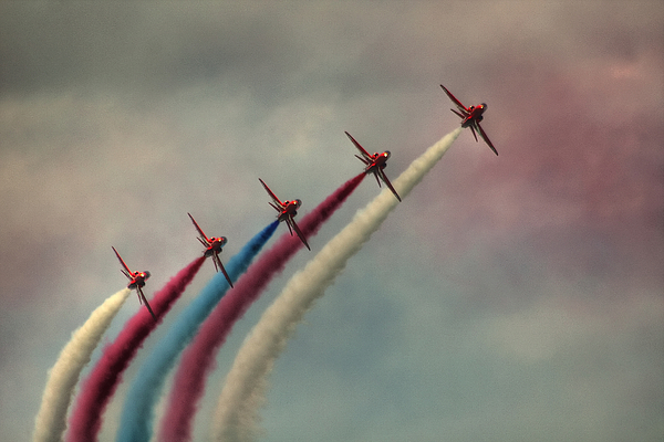 Arrows Photograph - Follow The Leader by Phil Clements
