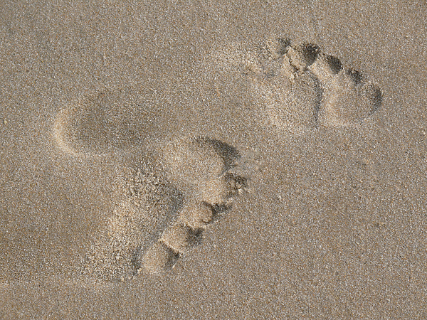 Beach Photograph - Footprints In The Sand 2 by Susan  Lipschutz