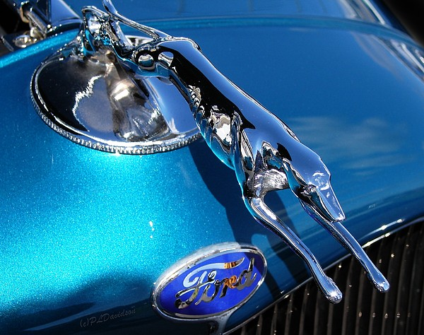 Classic Cars Photograph - Ford Greyhound Hood Ornament by Patricia L Davidson