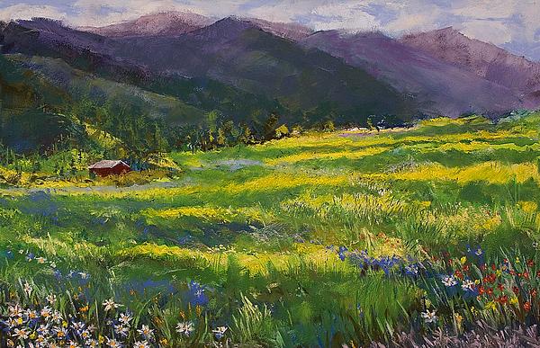 Forgotten Field Pastel - Forgotten Field by David Patterson