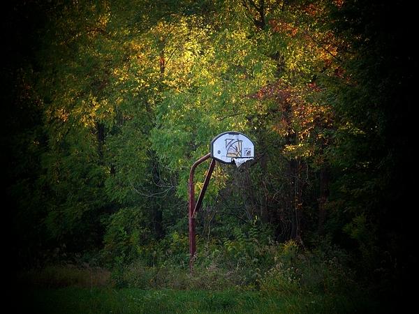 Basketball Photograph - Forgotten Hoop by Michael L Kimble