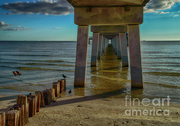 Fort Myers Beach Photograph - Fort Myers Beach by Judy Hall-Folde