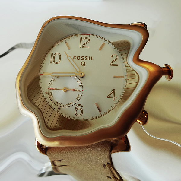 Watchs Photograph - Fossil Q by Bruce Iorio