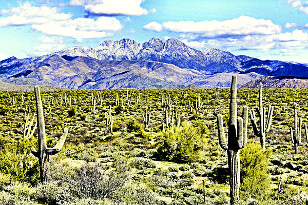 Southwest Photograph - Four Peaks by Sharon Broucek