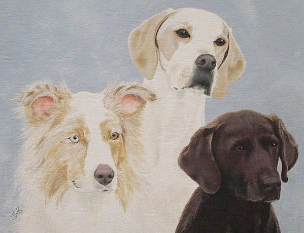 Pet Portrait Painting - Frans Dogs by Janice M Booth