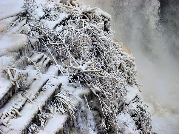 Ice Photograph - Freezing Falls by Tingy Wende