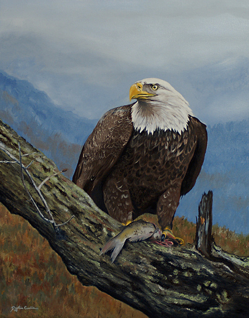 Bald Eagle Painting - Fresh Catch - Bald Eagle by Dustin Curtis