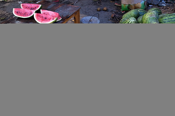 Abundance Photograph - Fresh Watermelons For Sale by Sami Sarkis