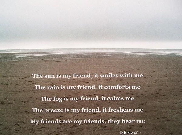 Beach Photograph - Friendship by Deborah Brewer