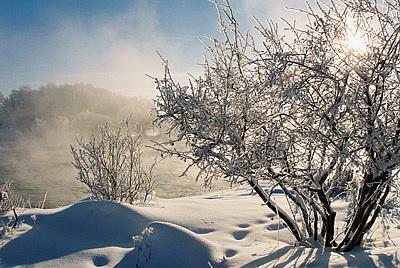 Landscape Photograph - Frosty Winter Morning by Gene Mace