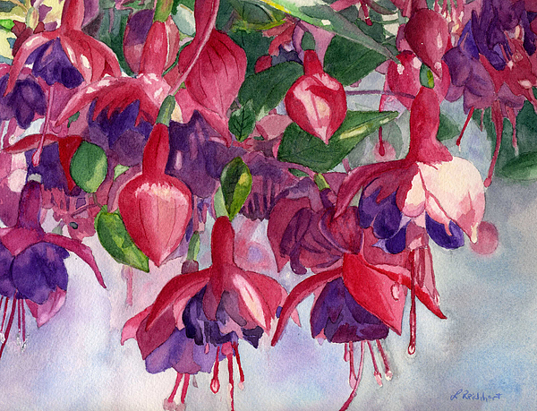 Watercolor Painting - Fuchsia Frenzy by Lynne Reichhart