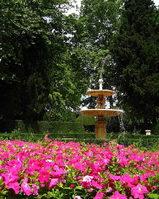 Spain Photograph - Fuente Con Flores En Retiro by Lindsey Orlando