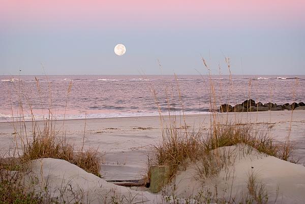 Full Moon Photograph - Full Moon Over Folly Beach by Vanessa Kauffmann