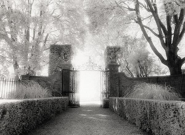 Garden Photograph - Garden Gate by Michael Hudson