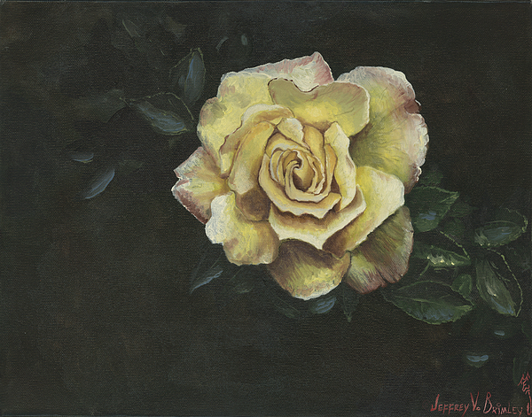 Rose Painting - Garden Rose by Jeff Brimley