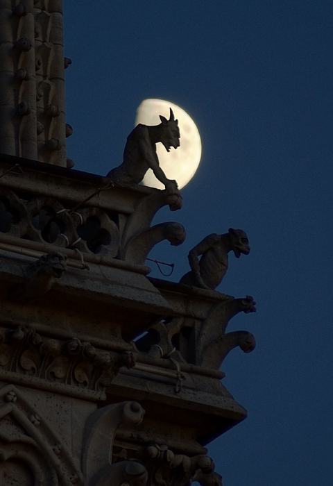 Gargoyle Photograph - Gargoyle Night Watch by Matthew Green