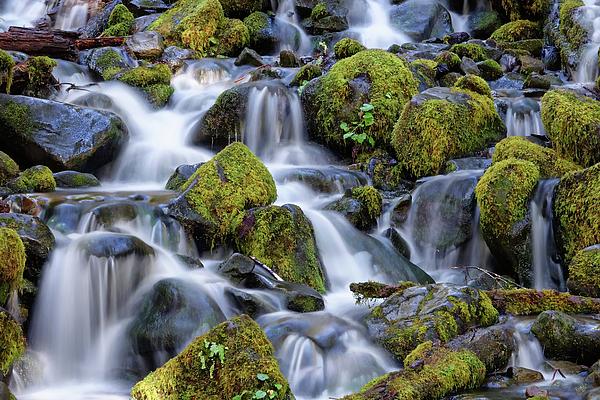 Cascade Photograph - Gentle Cascade by Rick Lawler