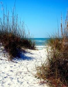Beach Photograph - Gentle Path by Gila  Todd