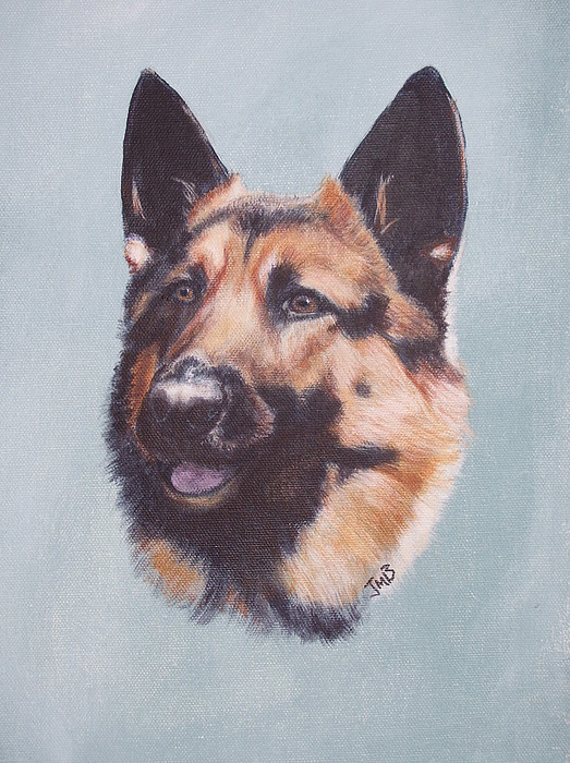 Dog Painting - German Shepherd  by Janice M Booth