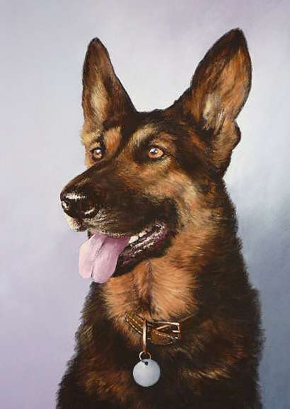 German Painting - German Shepherd Portrait by Mark Whittaker