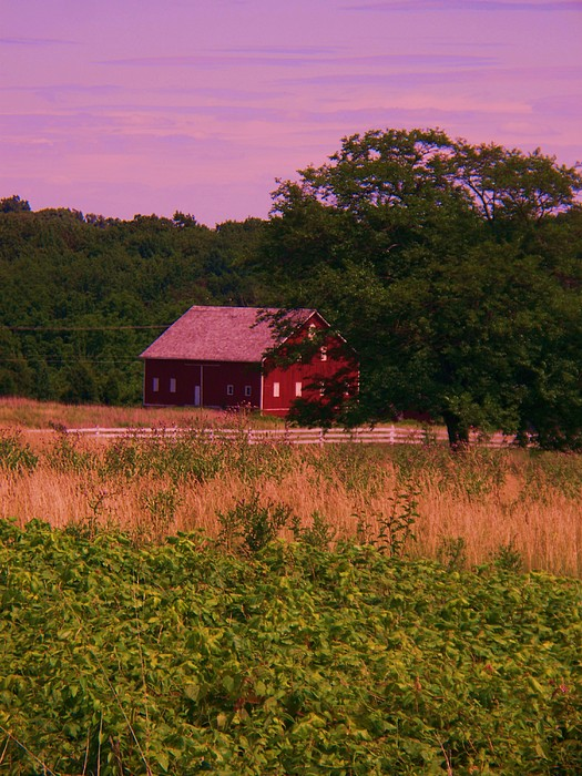 Gettysburg Photograph - Gettysburg Barn by Eric  Schiabor