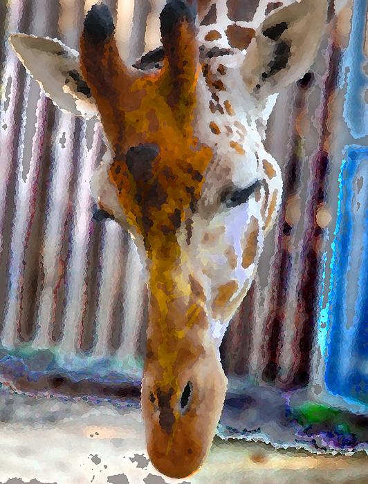Wildlife Photograph - Giraffe  by Danielle Stephenson