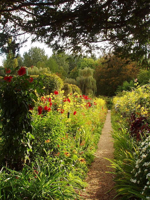 France Photograph - Giverny I by Wendy Uvino