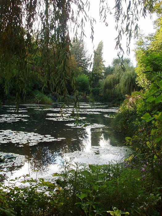 France Photograph - Giverny IIi by Wendy Uvino