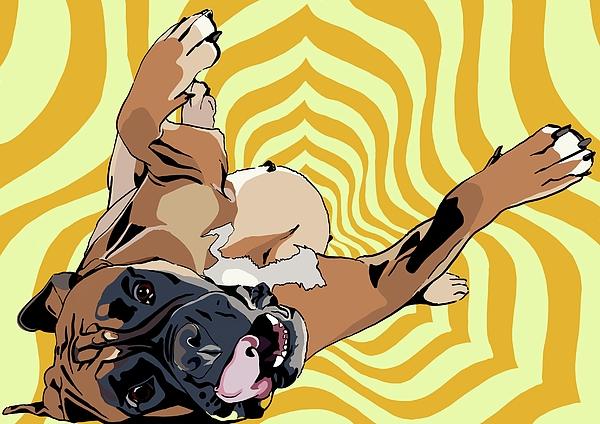 Boxer Digital Art - Glee by Kate Murray