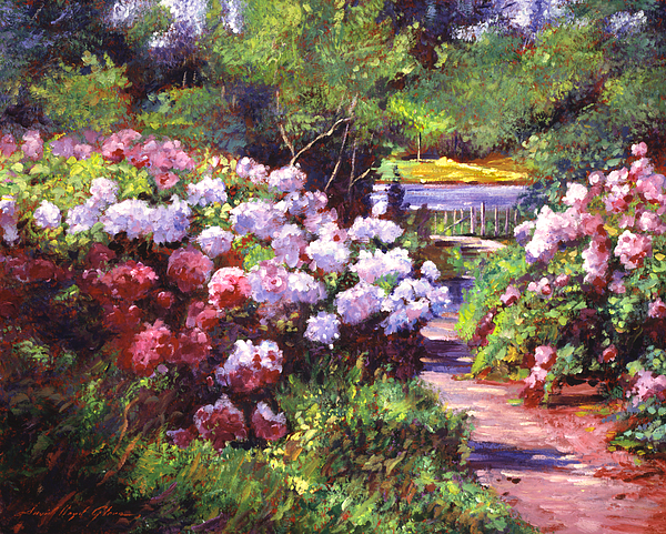 David Lloyd Glover - Glorious Blooms