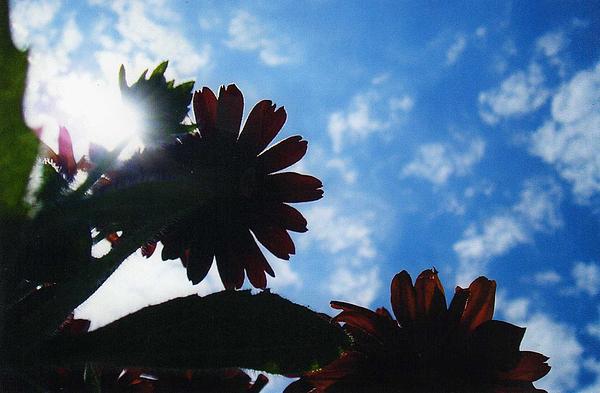 Sky Photograph - Glory by Renee Cain-Rojo