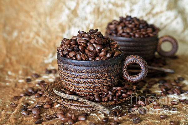 Coffee Photograph - Gold Coffee by Tracy Hall