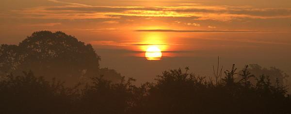 Sun Photograph - Gold by Maria Joy