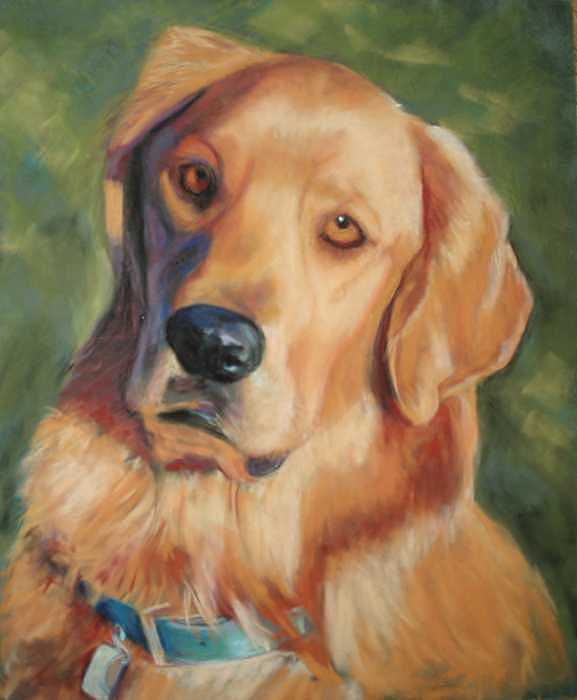 Golden Retriever Painting - Golden Boy by Billie Colson
