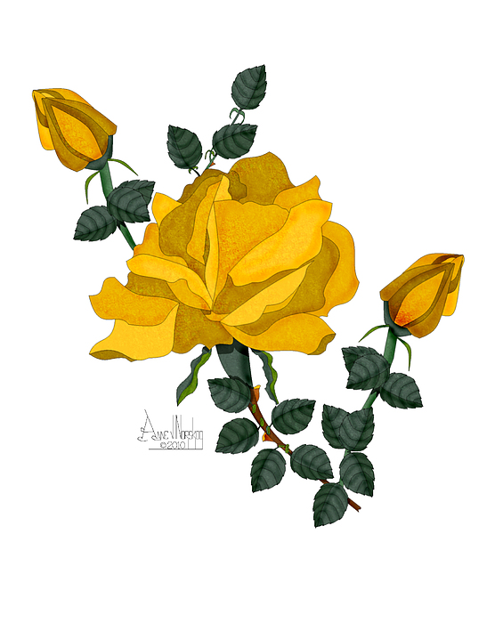Golden Rose Painting - Golden Glory by Anne Norskog