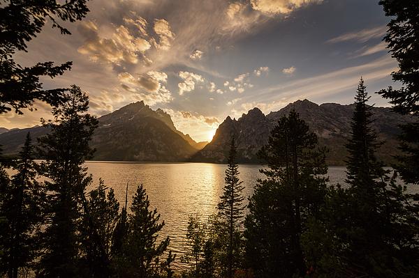 Jenny Lake Photograph - Golden Jenny Lake View by James BO Insogna